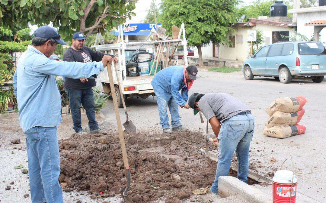 Continúa Japame realizando trabajos de bacheo en vialidades afectadas por reparaciones de fugas de agua potable y drenaje sanitario